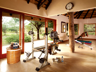 Gym Kings Camp Timbavati Game Reserve Accommodation Booking Hoedspruit Limpopo Mpumalanga Five Star