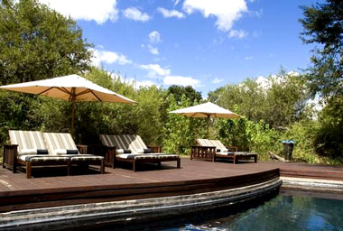 swimming pool Ngala Tented Camp Timbavati Game Reserve Mpumalanga Luxury South African Safari