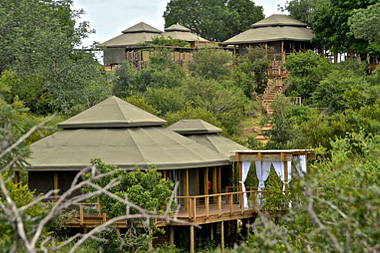 Simbavati Hilltop Lodge Big 5 Timbavati Game Reserve Luxury Safari Tents Mpumalanga Luxury South African Safari