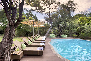 swimming pool Tanda Tula Safari Camp Timbavati Game Reserve Mpumalanga Luxury South African Safari