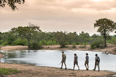 Safari Game Walks Waterhole Tanda Tula Field Camp Timbavati Game Reserve Luxury South African Safari