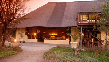 Kambaku Safari Lodge Timbavati Game Reserve Accommodation Bookings Kruger National Park