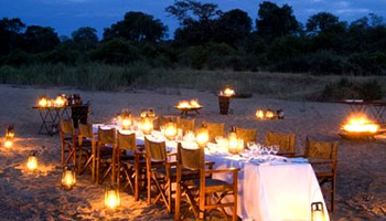 Ngala Safari Lodge Timbavati Game Reserve Accommodation Bookings Kruger National Park