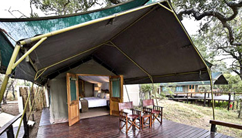 Simbavati River Lodge Timbavati Game Reserve Accommodation Bookings Kruger National Park
